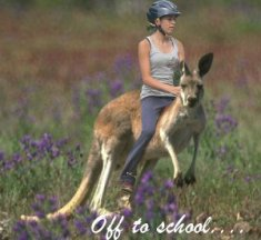 riding kangaroos[1]