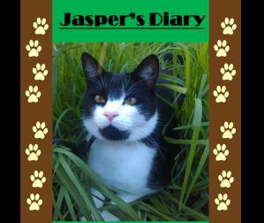 Jaspers Diary